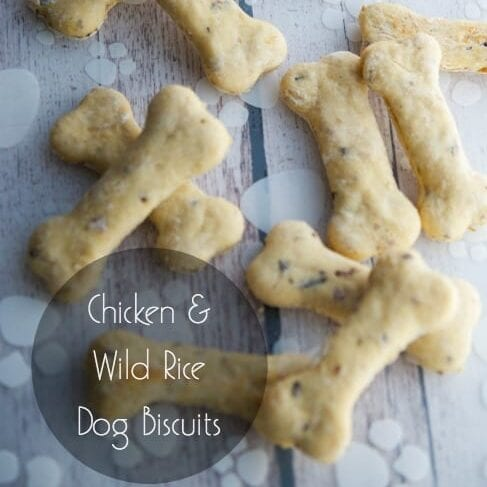 chicken and wild rice pet treats